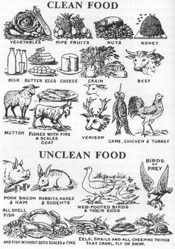 Clean and unclean food
